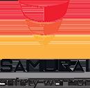 Samurai expert Logo